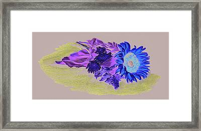 Sunflower Framed Print by Vanda Luddy