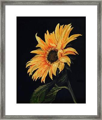 Sunflower Vii Framed Print