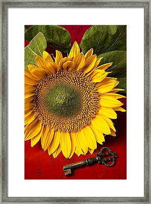Sunflower With Old Key Framed Print by Garry Gay