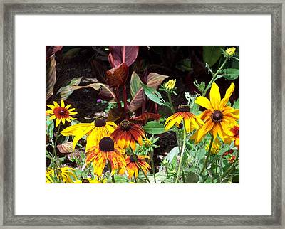 Sunflowerland Framed Print by Jean Booth