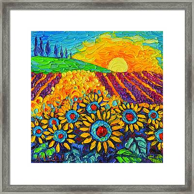 Sunflowers And Lavender At Sunrise Palette Knife Oil Painting By Ana Maria Edulescu Framed Print