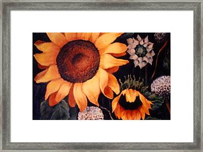Sunflowers And More Sunflowers Framed Print by Jordana Sands