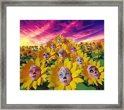 Sunflowers Framed Print by Betsy Knapp