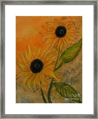 Sunflowers Framed Print by Carla Stein