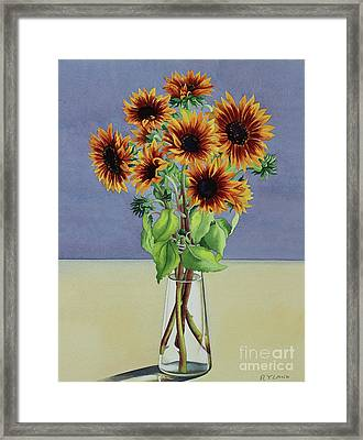 Sunflowers Framed Print by Christopher Ryland