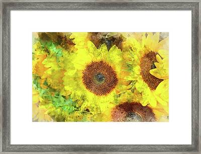 Sunflowers Close Up Framed Print by Brandon Bourdages