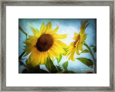 Sunflowers Duet Framed Print