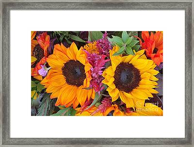 Sunflowers Eyes Framed Print by Jasna Gopic