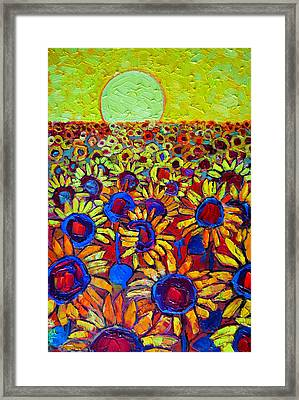 Sunflowers Field At Sunrise Framed Print by Ana Maria Edulescu