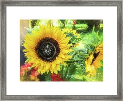 Sunflowers Flourish Visions Of Summer Framed Print by Mona Stut