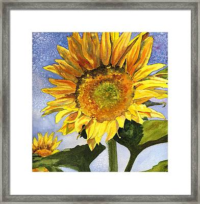 Sunflowers II Framed Print by Anne Gifford