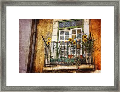 Sunflowers In The City Framed Print by Carol Japp