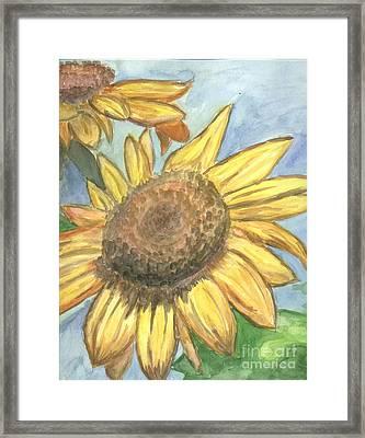 Sunflowers Framed Print by Jacqueline Athmann