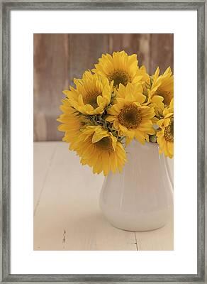 Sunflowers Framed Print by Kim Hojnacki