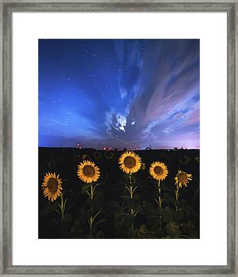 Sunflowers Long Exposure Framed Print by Cale Best