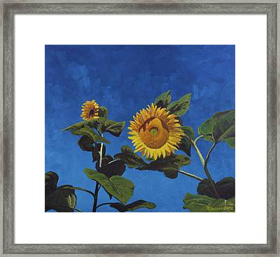 Sunflowers Framed Print by Marco Busoni