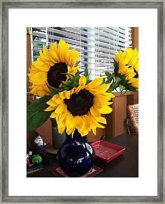 Sunflowers Framed Print by Molly Williams