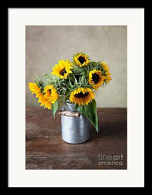 Yellow Sunflower Digital Art Framed Prints