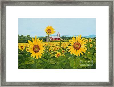 Sunflowers On Route 45 - Pennsylvania- Autumn Glow Framed Print