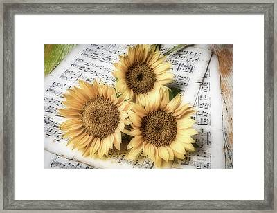 Sunflowers On Sheet Music Framed Print by Garry Gay