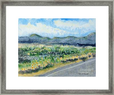Sunflowers On The Way To The Great Sand Dunes Framed Print by Holly Carmichael