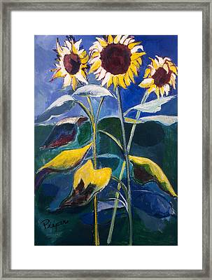 Sunflowers Standing Tall Framed Print