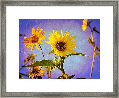 Framed Print featuring the photograph Sunflowers - The Arrival by Glenn McCarthy Art and Photography