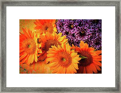 Sunflowers With Pom Spray Framed Print by Garry Gay