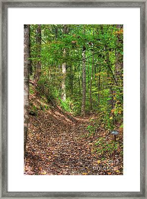 Sunken Trace Dogwood Vallley  Framed Print by Larry Braun