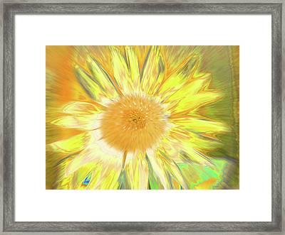 Sunking Framed Print