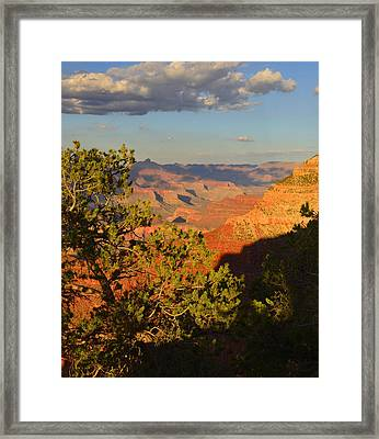 Framed Print featuring the photograph Sunkissed Afternoon by Stephen  Vecchiotti