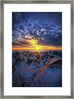 Sunkissed Framed Print by Phil Koch