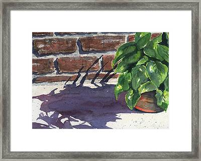 Sunlight And Shadows Framed Print by Marsha Elliott