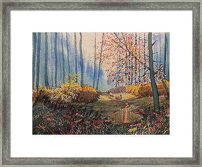 Sunlight And Sheep In Sledmere Woods Framed Print