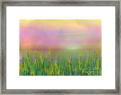 Sunlight At The Edge Of The Sea Framed Print by Judi Bagwell