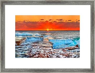 Sunlight Delight Framed Print