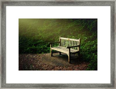 Sunlight On Park Bench Framed Print