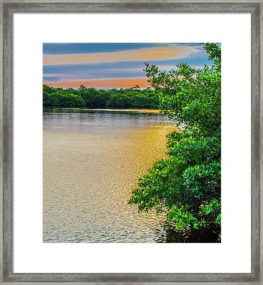 Framed Print featuring the photograph Sunlight On The Marsh by Steven Ainsworth