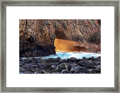 Sunlight Through  Framed Print