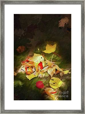 Framed Print featuring the digital art Sunlit Autumn Leaves On Dark Moss Ap by Dan Carmichael