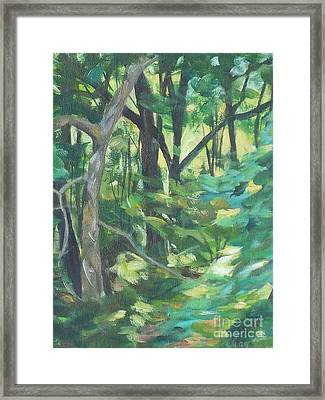 Sunlit Backyard Framed Print