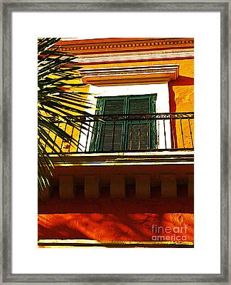 Sunlit By Michael Fitzpatrick Framed Print by Mexicolors Art Photography