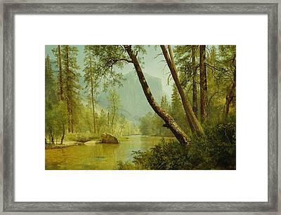 Sunlit Forest Framed Print by Albert Bierstadt