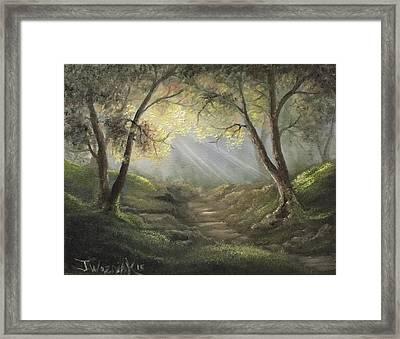 Sunlit Forrest  Framed Print