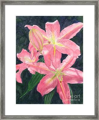Sunlit Lilies Framed Print