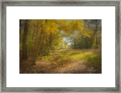 Sunlit Meadow In Borderland Framed Print