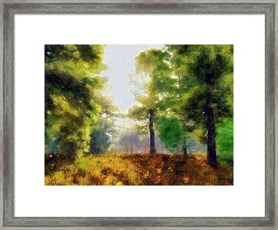 Sunlit Meadow Painted Framed Print