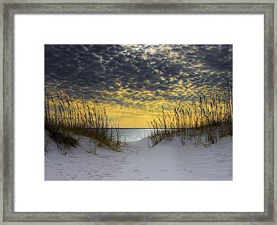 Sunlit Passage Framed Print
