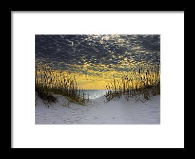 Coast Framed Prints