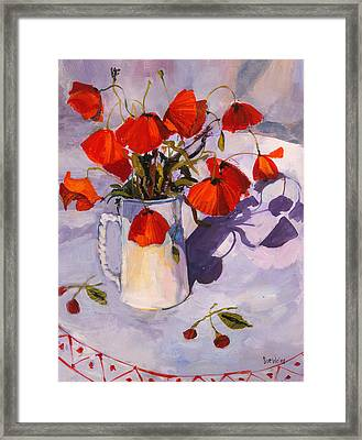 Sunlit Poppies Framed Print by Sue Wales